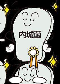 内城菌イメージ